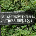 Does Blogging Reduce Stress?