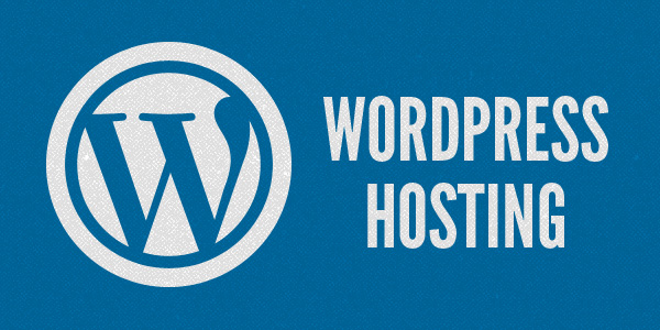 How to Choose a Cost-Effective WordPress Hosting Solution?