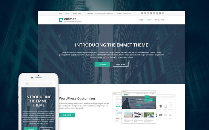 emmet-business-consultant-wordpress-theme-min