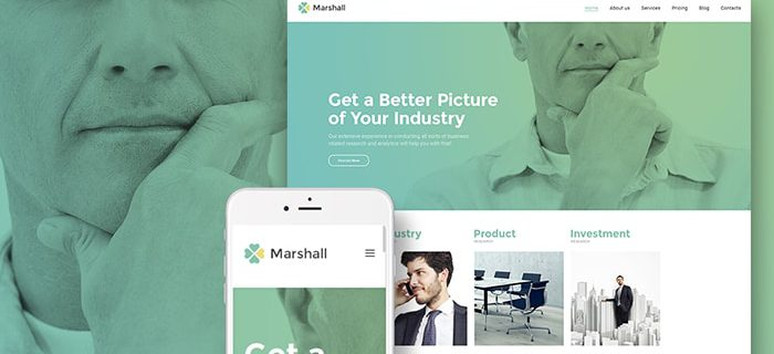 Marshall business WordPress Theme