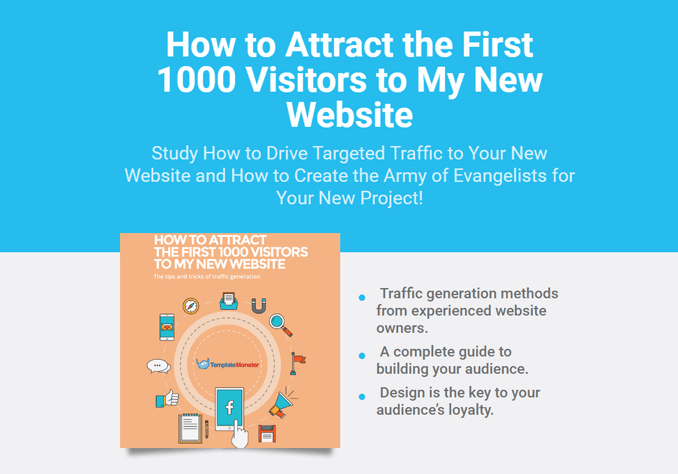How to Attract the First 1000 Visitors to My New Website Copy