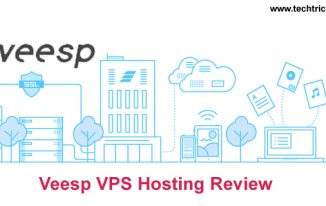 Veesp VPS Hosting Review