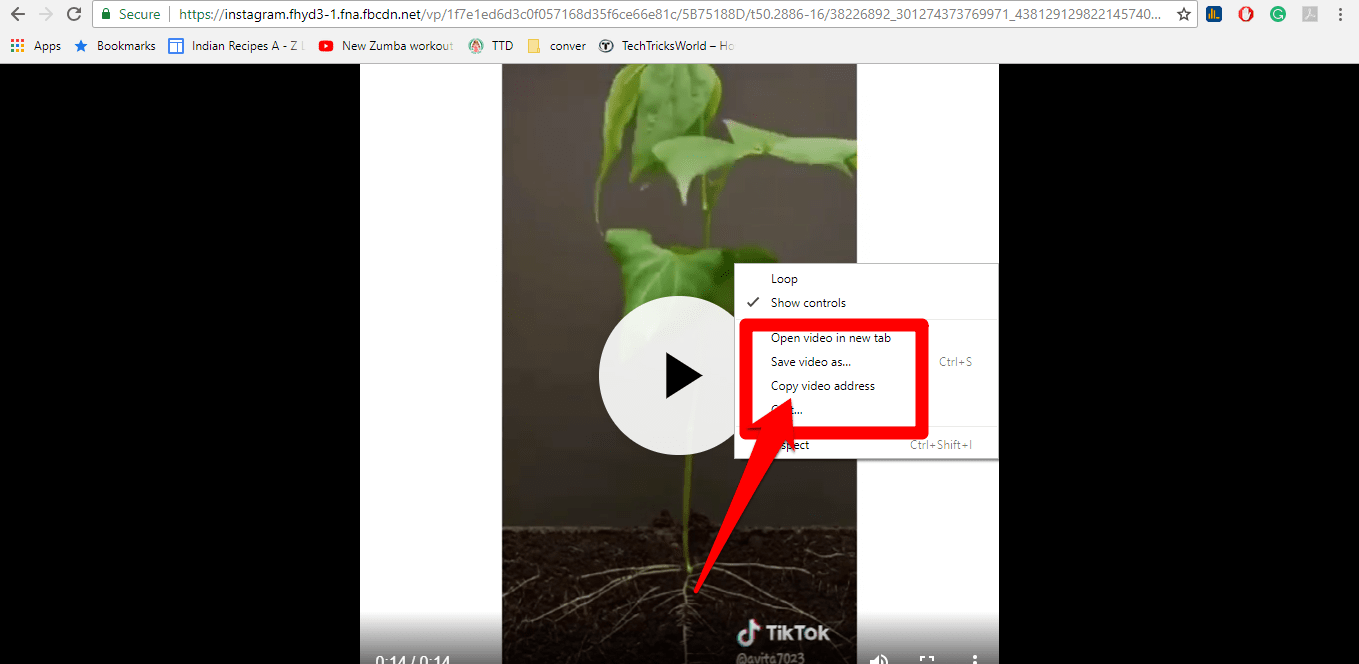 How to Download Instagram Videos on Phone and Computer?