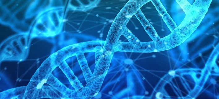 Everything You Need to Know About DNA Ancestry Testing