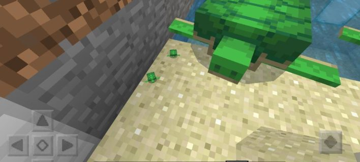 How Long Does It Take for Turtle Eggs to Hatch in Minecraft?