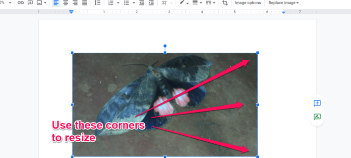 How to Move Images in Google Docs?