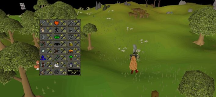 All About OSRS Combat and Support Skills